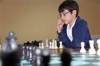 Chess Studies